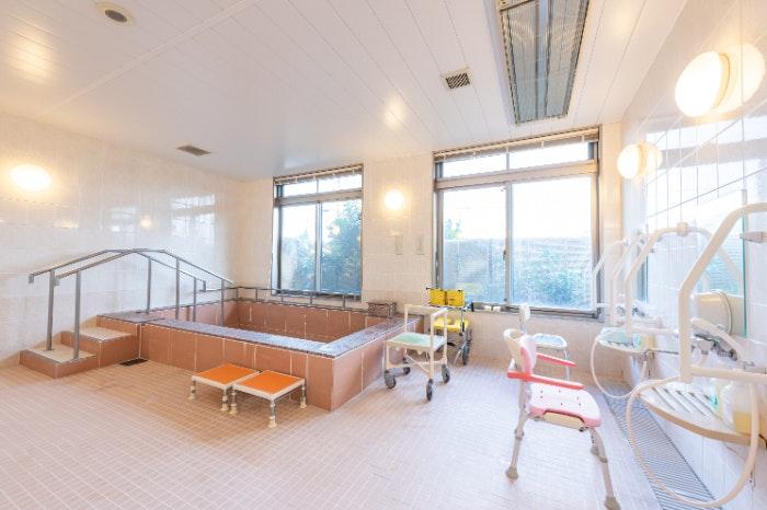 居室 イリーゼ八潮(有料老人ホーム[特定施設])の画像