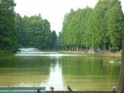 周辺環境(大宮公園) ミモザ浦和(有料老人ホーム[特定施設])の画像
