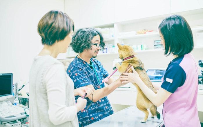 動物診察室 ペピイ・ハッピープレイスTAMATSUKURI(住宅型有料老人ホーム)の画像